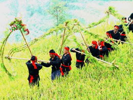 web_minorities - mulam_straw_dragon_dance